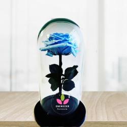 Rosa preservada  Azul Cielo