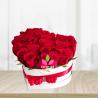 Corazon de rosas rojas x 24